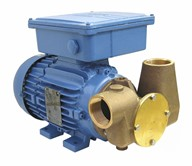 "Utility 80' 1 1/2"" Self-Priming Flexible Impeller Pump 110volt/1 phase/50Hz a.c."